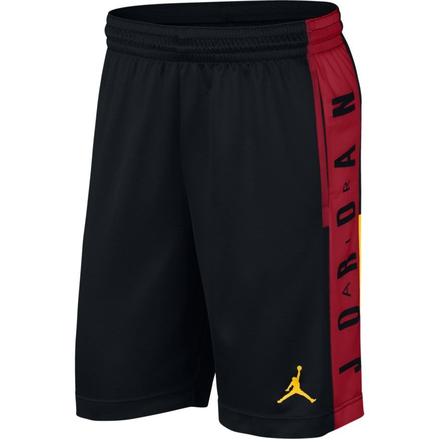 169a8739f851 Air Jordan Rise Graphic Basketball Shorts - 888376-011
