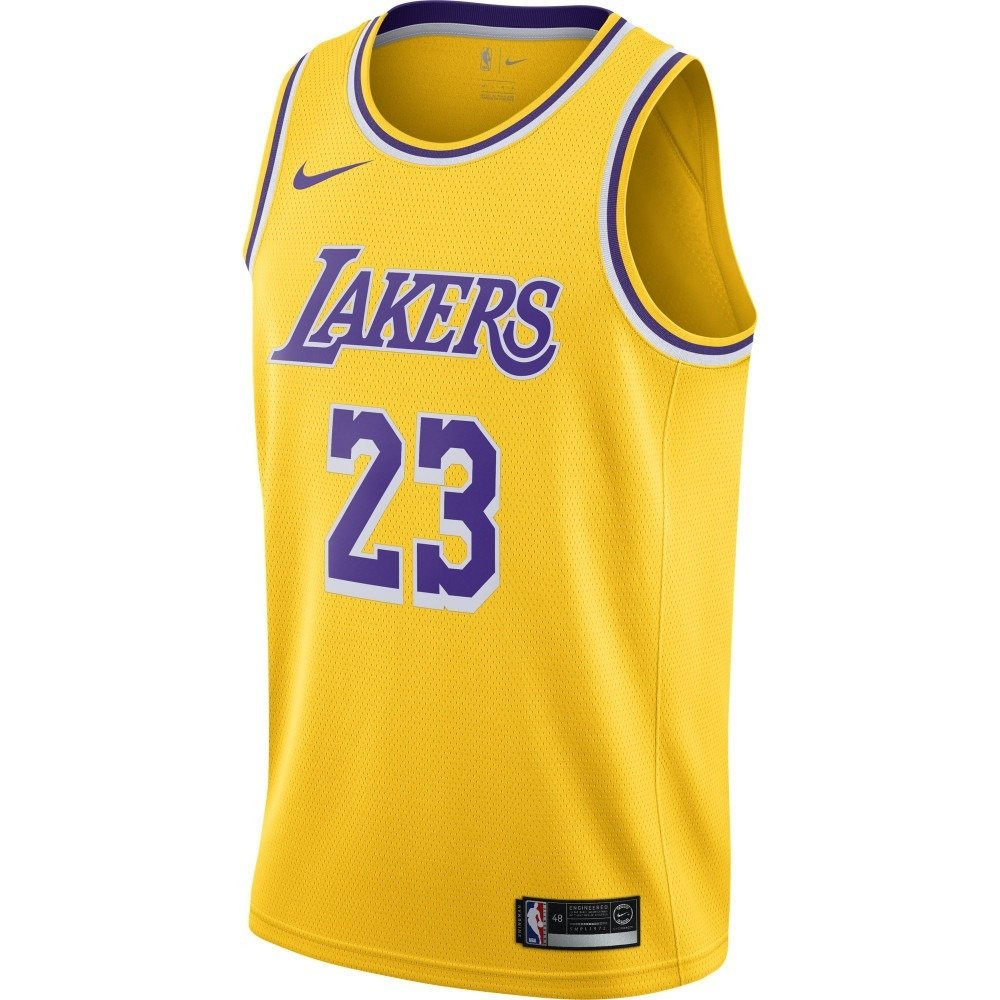 watch c71c4 29396 Nike NBA LeBron James Los Angeles Lakers Swingman Junior Jersey - EZ2B7BZ2P